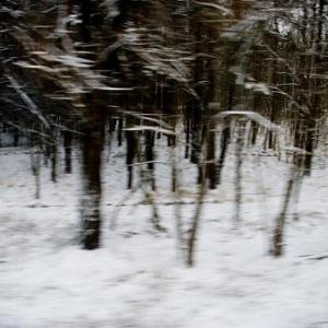 Winterlandschaft - ein Bilderbogen